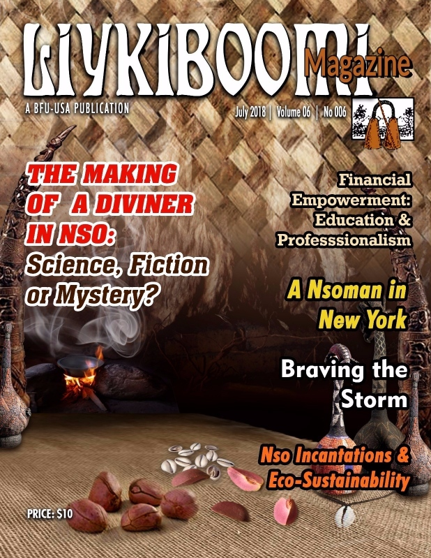 Liykiboomi2018 Cover Web
